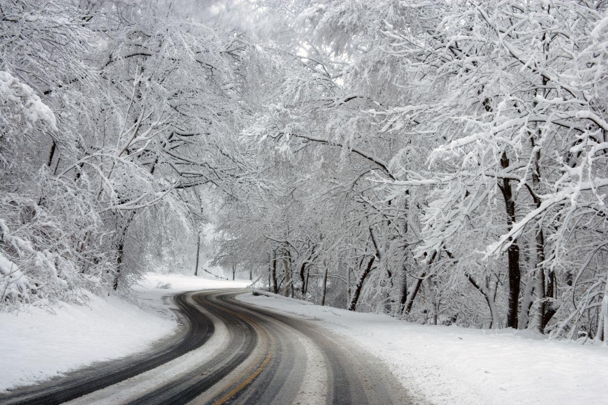 .Lumi, libe tee
